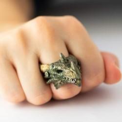 Nous Sommes Le Dragon